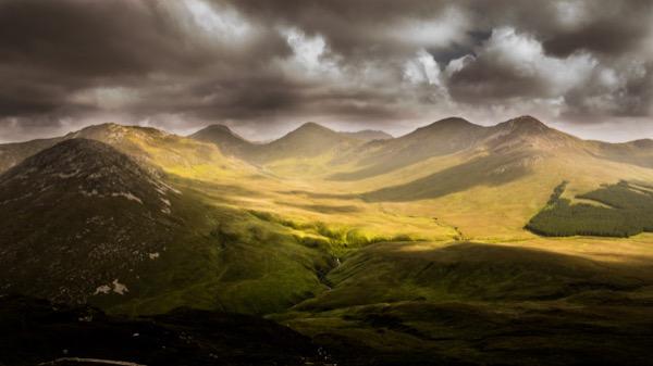 Luscious landscape 2